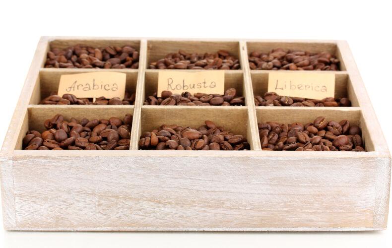 Tutte Le Varieta Di Caffe Arabica