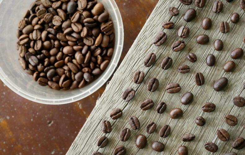 Tutte Le Varieta Di Caffe Esistenti