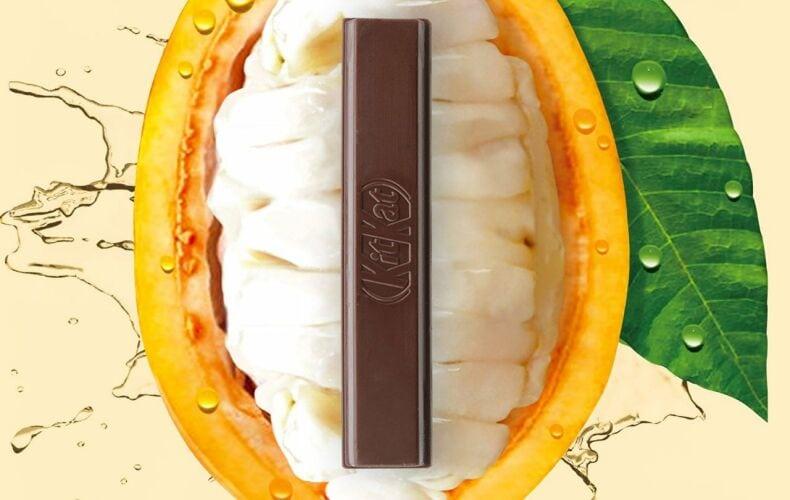 Nestle Inventa Il Cioccolato Senza Zuccheri Raffinati