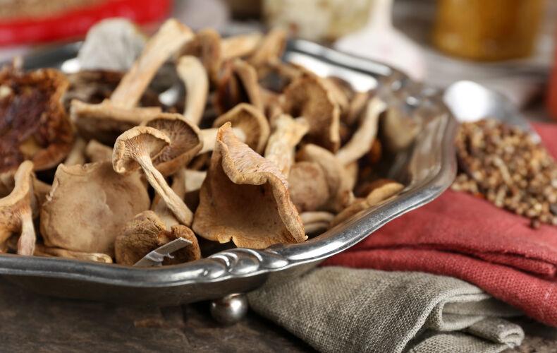 Come Cucinare I Funghi Secchi Sceglierli