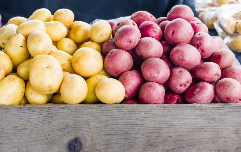 Come Scegliere Le Patate Giuste In Base Alla Preparazione