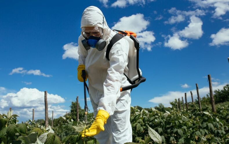 Pesticidi Fertilita Maschile