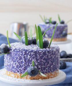 Ricetta Mini Cheesecake Ai Mirtilli