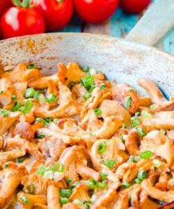 Ricetta Funghi Finferli Al Pomodoro
