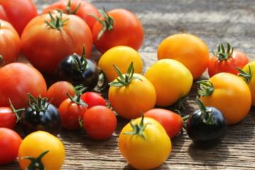 Come Conservare I Pomodori